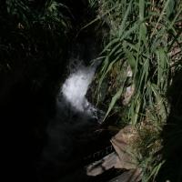 imagen_37