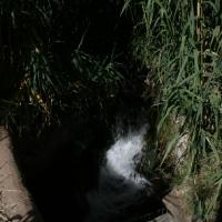 imagen_42
