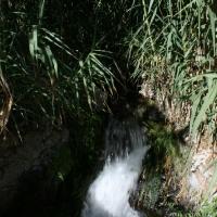imagen_50