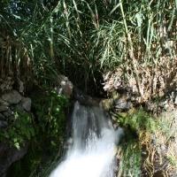 imagen_54